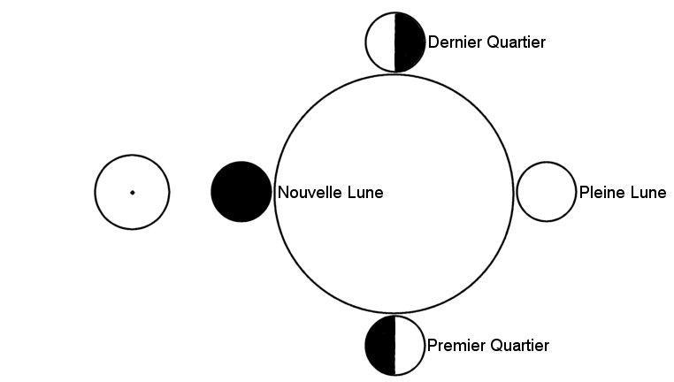 4-FPR-Cycle Lunaison